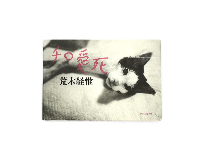 Nobuyoshi Araki 'Chiro Cat'