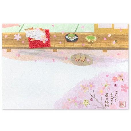 Postcard Sakura Cat