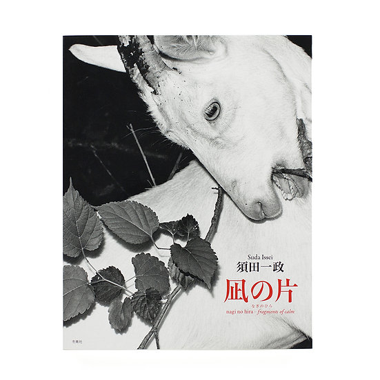 Suda Issei 'Fragments of Calm' 'Nagi No Hira'