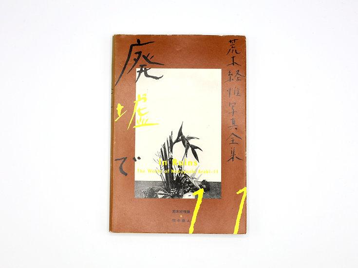 The Works of Nobuyoshi Araki 11 'In Ruins'