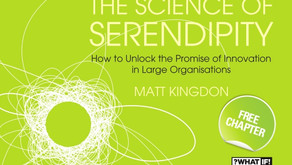The Role of Serendipity in Innovation