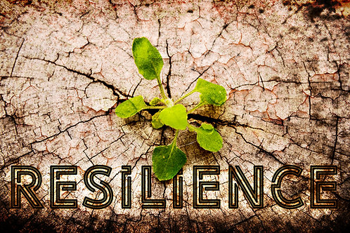 Resilience - Pastor Gerald Brooks