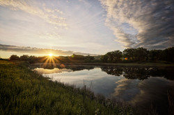 Elizabeth Hall Wetlands