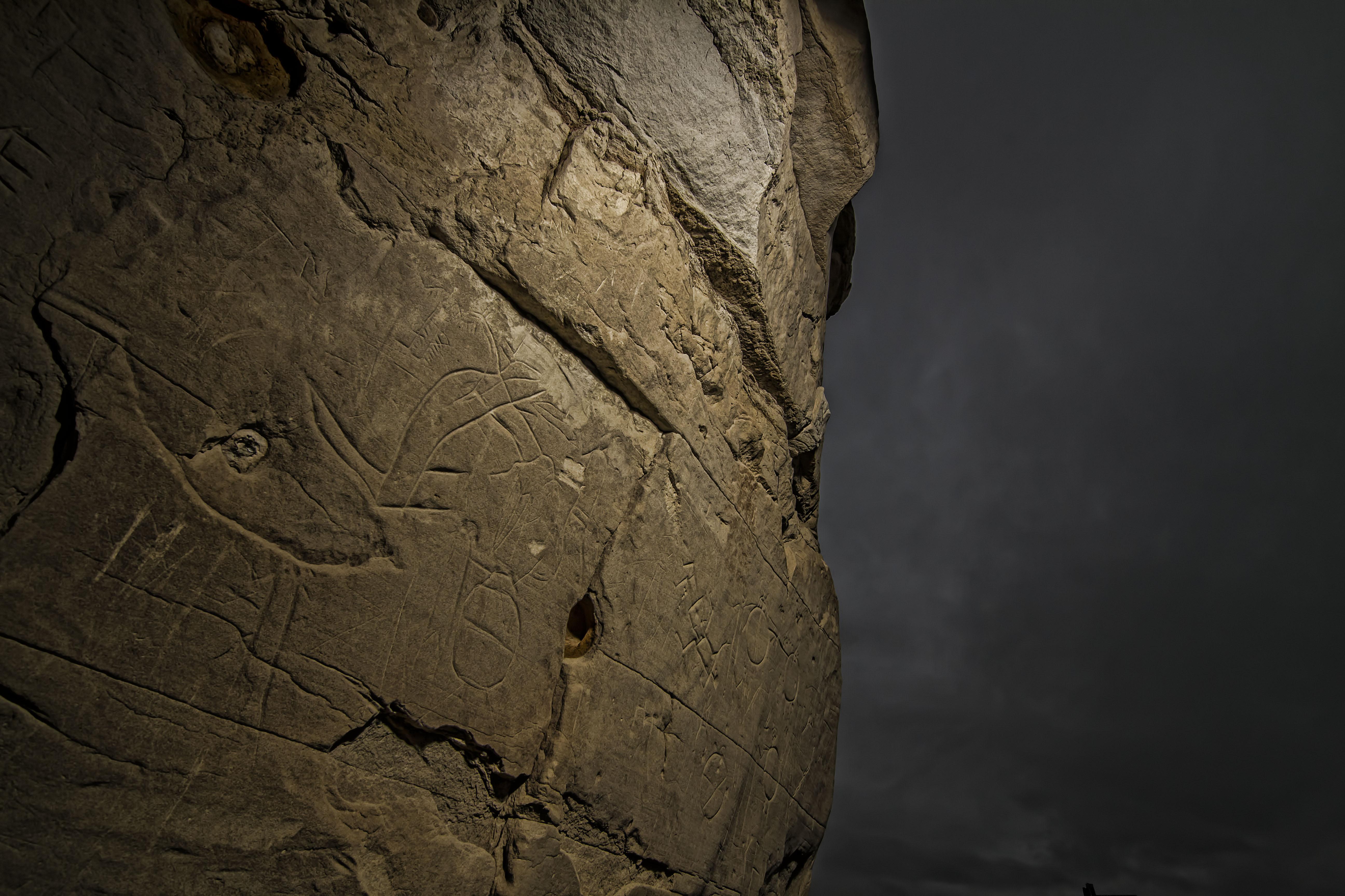 First Nations Petroglyphs 1