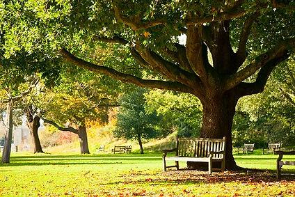 Peaceful-Place-Park.jpg