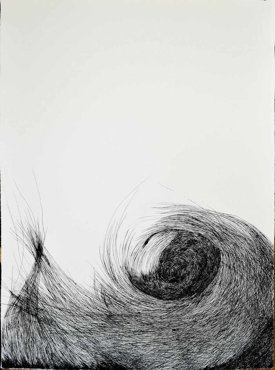 05-Nest1.jpg