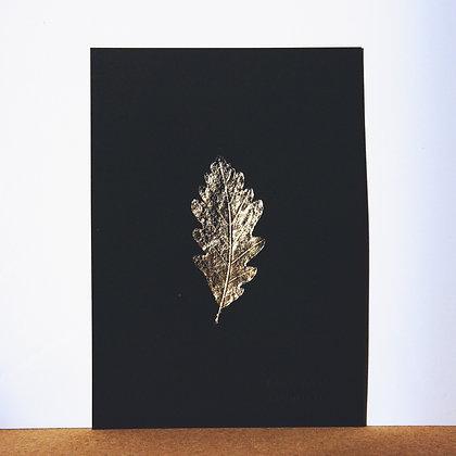 Chêne Or n°4