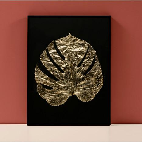 Monstera deliciosa dorée