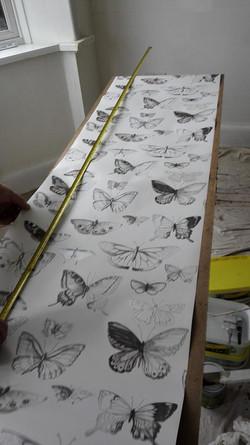 wallpaper belfast