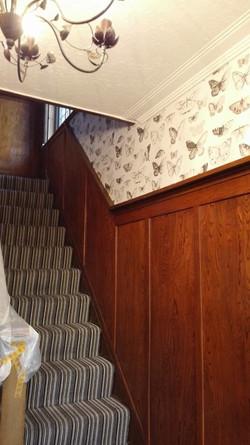 wallpaper belfast 2