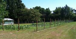 Produce Garden