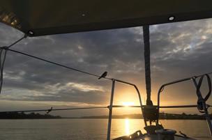 Zondagochtend, Domburg, Suriname