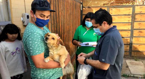 Hospital Veterinario de Calle Larga realiza operativos a domicilio durante la pandemia