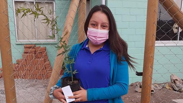 Más de trescientos árboles fueron entregados en nueva villa Cumbres de Calle Larga