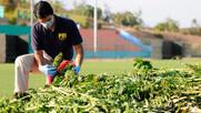 PDI Los Andes incautó cargamento de drogas avaluado en 3.600 millones de pesos