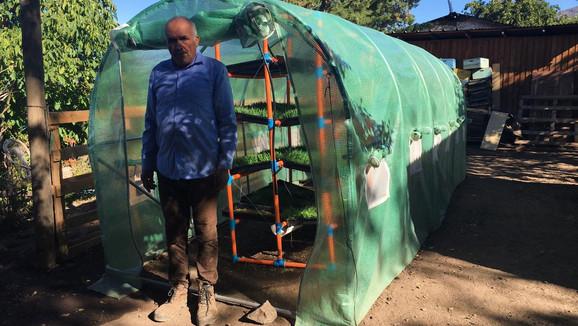 En la Provincia de Los Andes potencian 27 proyectos de forraje hidropónico para enfrentar la sequía
