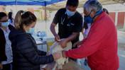 Municipio de Llay Llay realizará mil esterilizaciones de mascotas durante este segundo semestre