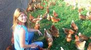 Boom de venta de huevos de gallinas felices potencia a emprendedoras de la región