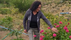 Agricultora recibe importante distinción regional por su ejemplar historia de lucha contra la sequía