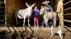 Ganadera de San Esteban desarrolla innovación tecnológica contra la sequía con apoyo de Indap