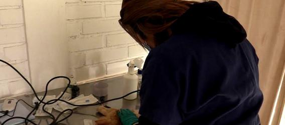 Ochocientas implantaciones de chip y cien esterilizaciones de mascotas realizará el Hospital Veterin