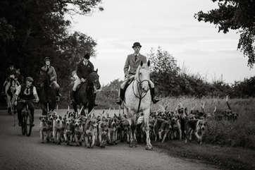Mounted hound exercise