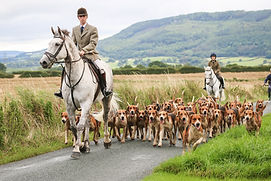 Hurworth Hunt -154.JPG
