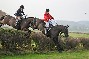 Hurworth Hunt 078.jpg