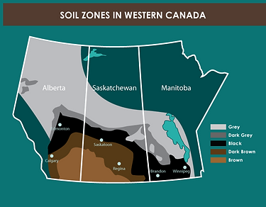 Soil zones in western Canada.