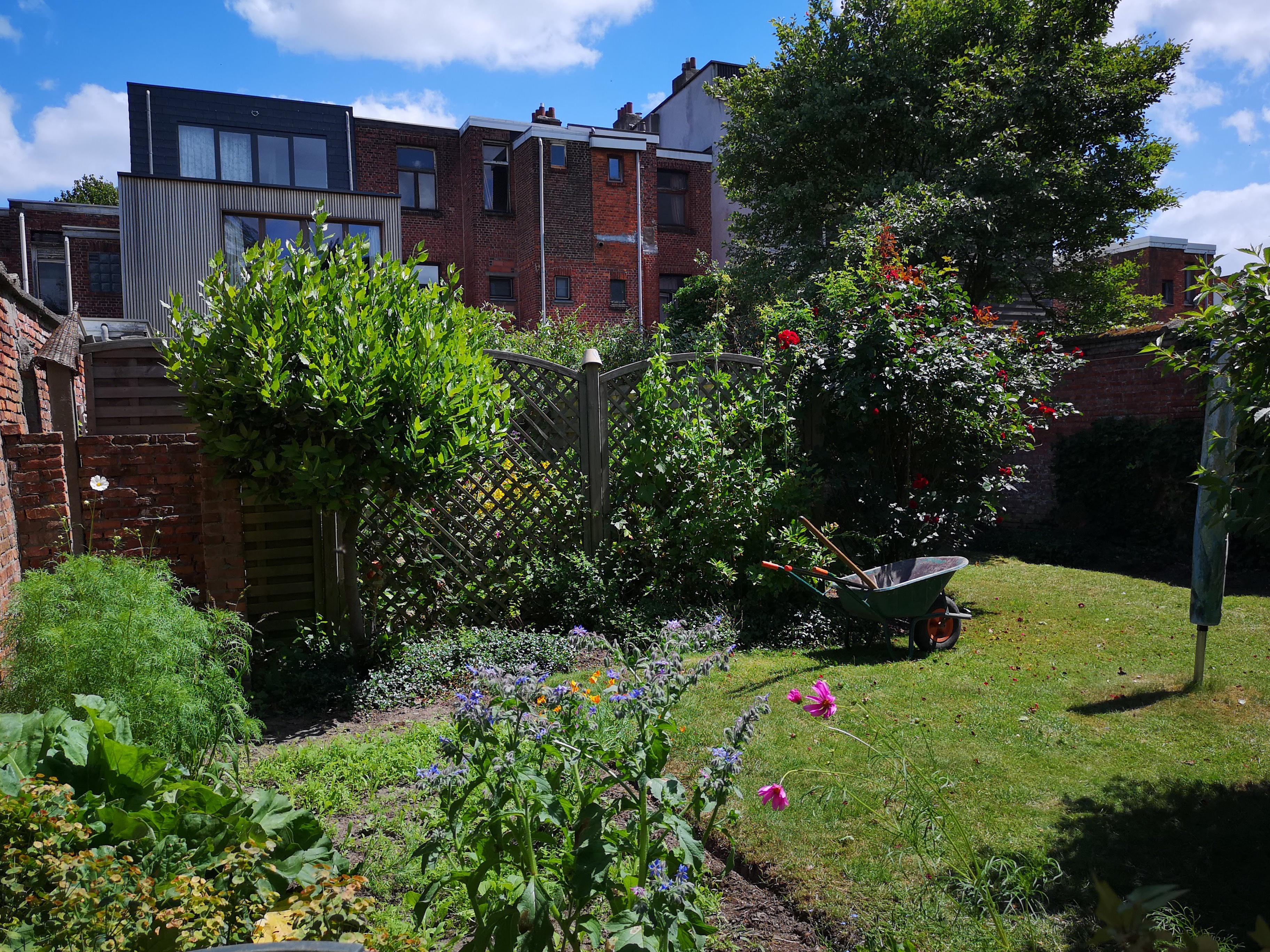 tuin naar gevel