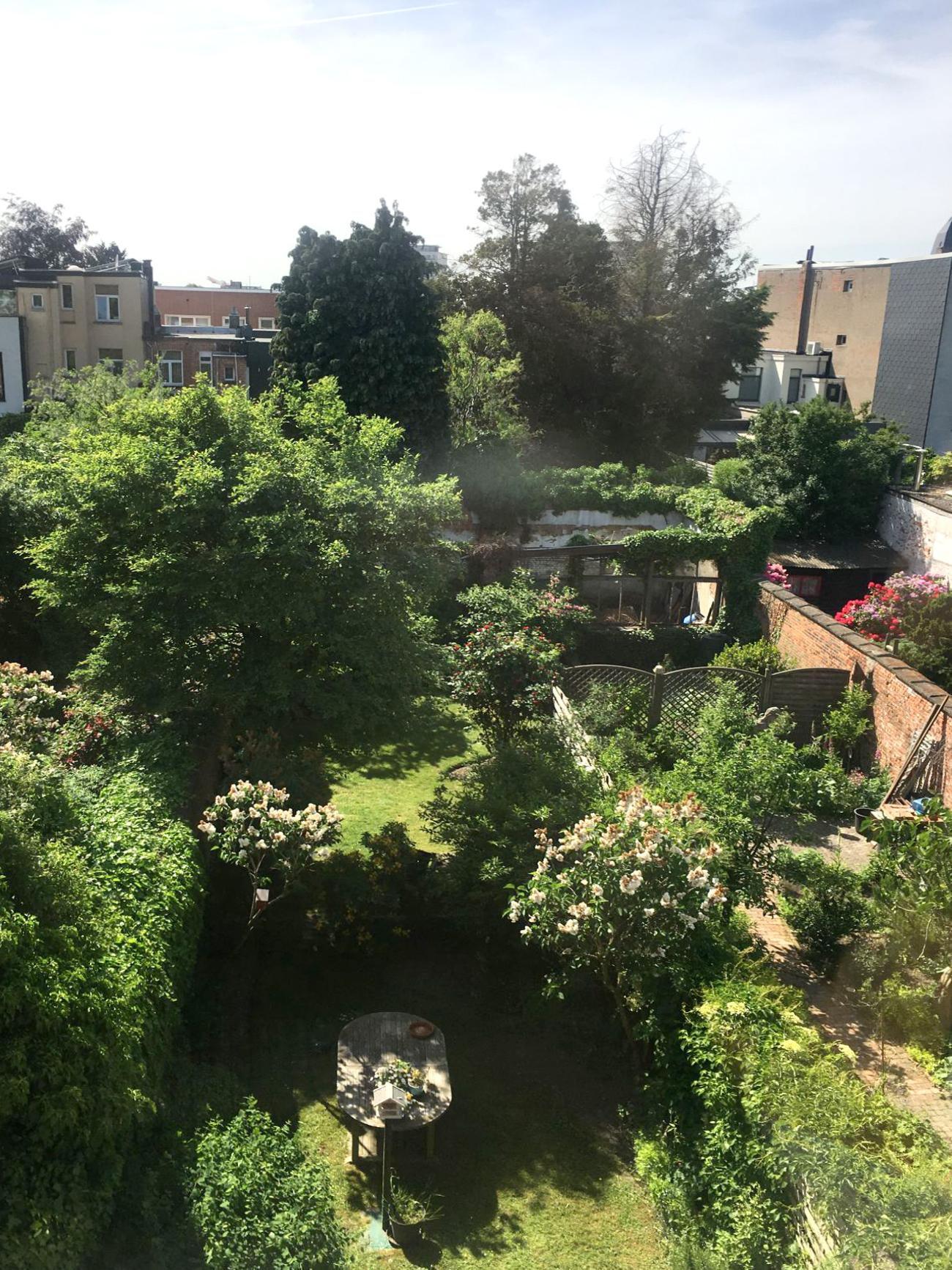 tuin van boven