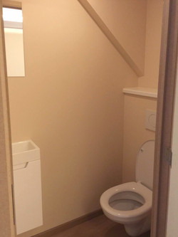 3 toilet2