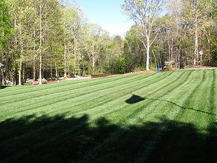 Greer landscaping