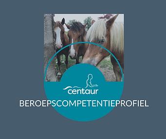 Centaur Beroepscompetentieprofiel.png
