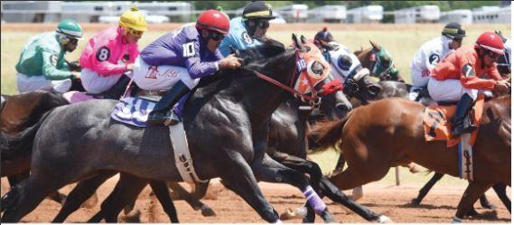 horse racing gcf.JPG