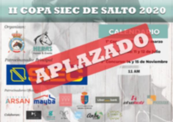Cartel II Copa SIEC 2020_general_hor_APL