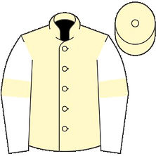 Gold Rush Racing Colours.jpg