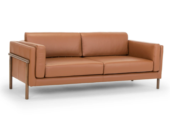 Caramel Couch.PNG