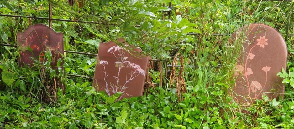 Raveningham Sculpture Trail 2021