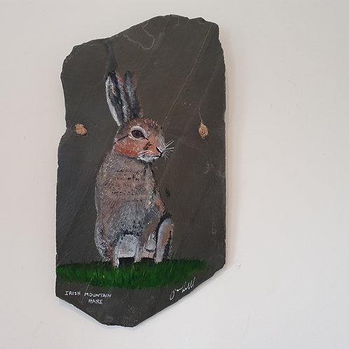 Irish Mountain Hare - large slate