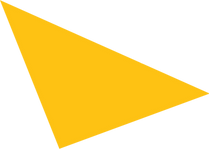 yellow triangle Our Vision