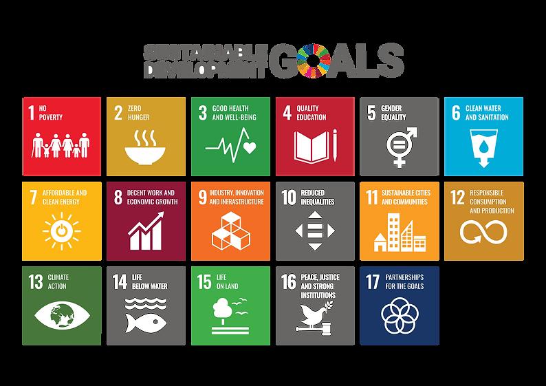20201123 Photoshopped UN goals (17).png