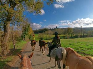 FUORI ORARIO IN CAMPAGNA - a cavallo