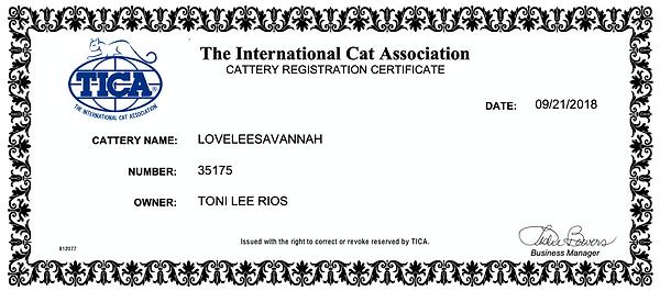 Lovelee Savannah TICA Cattery Registration #35175