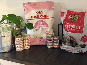 Recommended Products 👍🏻🐆❤️#RoyalCanin