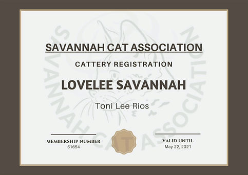 Lovelee Savannah SCA Cattery Registration #51654