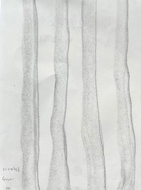 sorok drawing 1.jpg