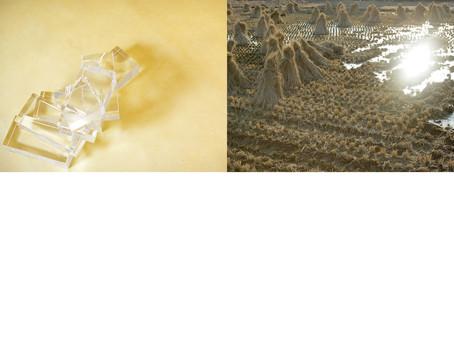 crystal01 vs crowd.jpg