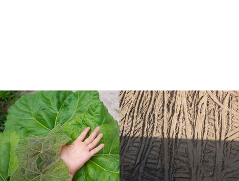 greenhand vs trace.jpg