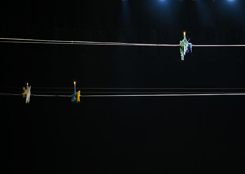 5 parrots, mixed media, dimension variable, 2011
